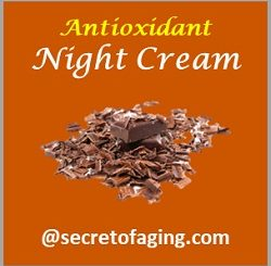 Antioxidant Night Cream by Secret of Aging