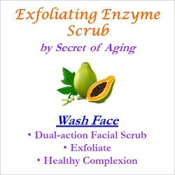 Exfoliating Enzyme Scrub Wash Face
